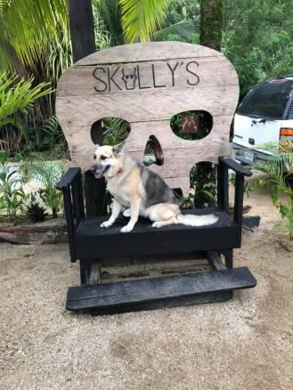 Angel skully seat